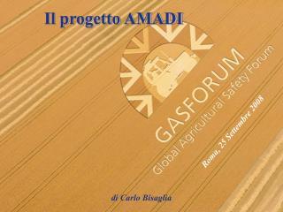 Il progetto AMADI