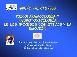 GRUPO PAI CTS-280 PSICOFARMACOLOGÍA Y  NEUROTOXICOLOGÍA  DE LOS PROCESOS COGNITIVOS Y LA EMOCIÓN