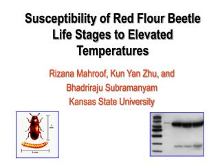Susceptibility of Red Flour Beetle Life Stages to Elevated Temperatures