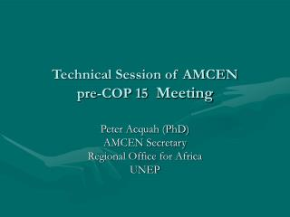 Technical Session of AMCEN  pre-COP 15   Meeting
