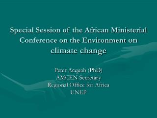Special Session of the African Ministerial Conference on the Environment  on climate change