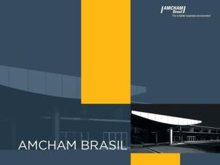 OVERVIEW ON AMCHAM BRAZIL INSTITUTIONAL PROFILE