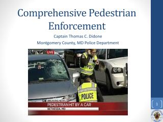 Comprehensive Pedestrian Enforcement