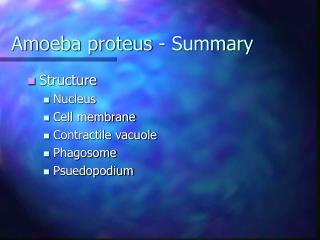 Amoeba proteus - Summary