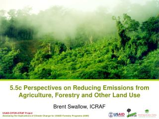 5.5c Perspectives on Reducing Emissions from Agriculture, Forestry and Other Land Use
