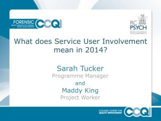 What does Service User Involvement mean in 2014?