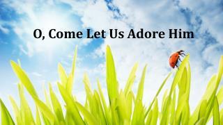 O, Come Let Us Adore Him