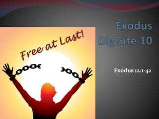 Exodus Dig Site 10