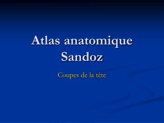 Atlas anatomique Sandoz