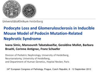 24 th  European Congress of Pathology, Prague, Czech Republic, 8 - 12 September 2012