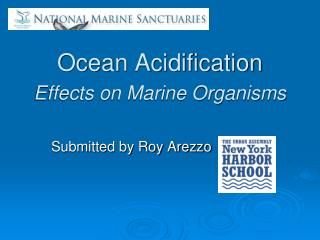 Ocean Acidification Effects on Marine Organisms