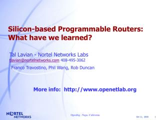 Silicon-based Programmable Routers:  What have we learned?