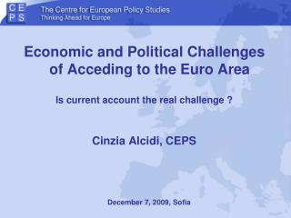 Economic and Political Challenges of Acceding to the Euro Area