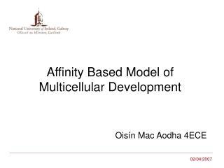 Affinity Based Model of  Multicellular Development