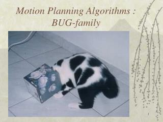 Motion Planning Algorithms : BUG-family