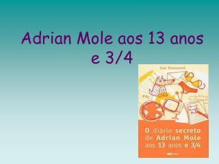 Adrian Mole aos 13 anos e 3/4