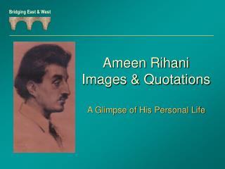 Ameen Rihani Images & Quotations