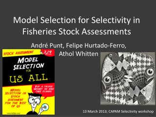 Model Selection for Selectivity in Fisheries Stock Assessments