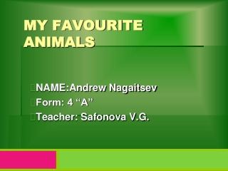 My  favourite   animals