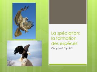 La  spéciation : la formation des  espèces