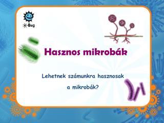 Hasznos mikrobák