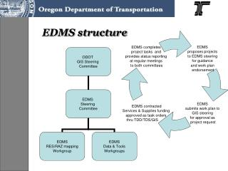 EDMS structure