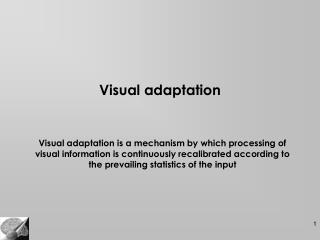 Visual adaptation