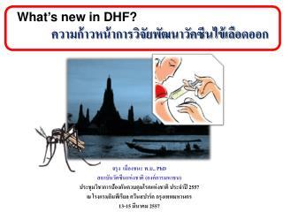 What's new in DHF?   ความก้าวหน้าการวิจัยพัฒนาวัคซีนไข้เลือดออก