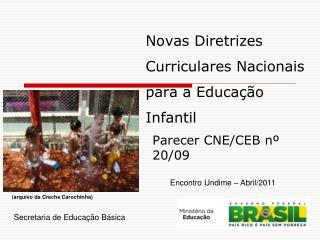 Novas Diretrizes Curriculares Nacionais para a Educação Infantil