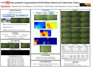 Fine-grained Categorization of Fish Motion Patterns in Underwater Videos