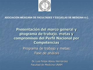 Programa de trabajo y metas: Fase de análisis Dr. Luis Felipe Abreu Hernández