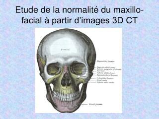 Etude de la normalité du maxillo-facial à partir d'images 3D CT