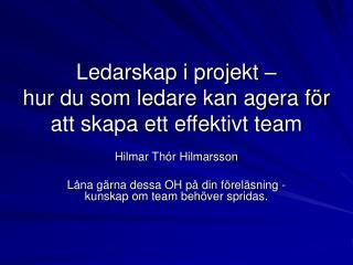 Ledarskap i projekt    hur du som ledare kan agera f r att skapa ett effektivt team