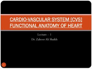 CARDIO-VASCULAR SYSTEM [CVS] FUNCTIONAL ANATOMY OF HEART