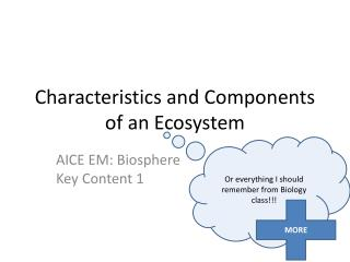 Characteristics and Components of an Ecosystem