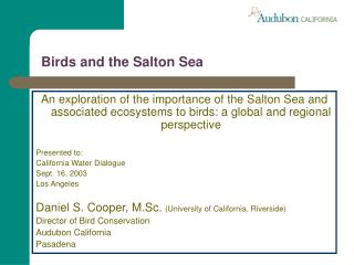 Birds and the Salton Sea
