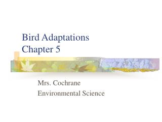 Bird Adaptations Chapter 5
