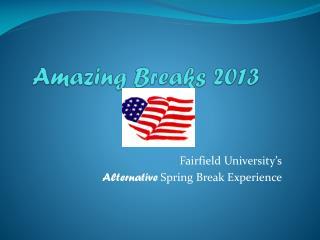 Amazing Breaks 2013
