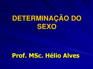 DETERMINA��O DO SEXO