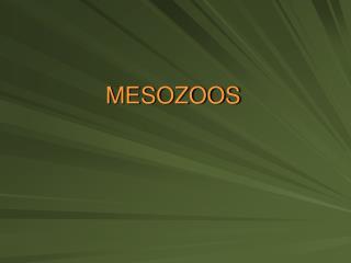 MESOZOOS
