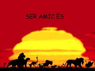 SER AMIC �S ...