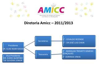 Diretoria Amicc  – 2011/2013