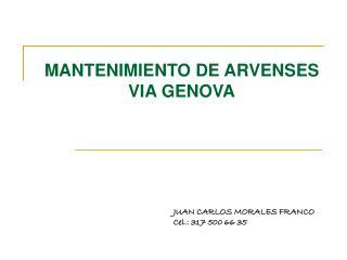 MANTENIMIENTO DE ARVENSES  VIA GENOVA