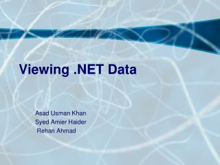 Viewing .NET Data