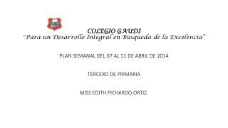 COLEGIO  GAUDI � Un Desarrollo Integral en B�squeda de la Excelencia