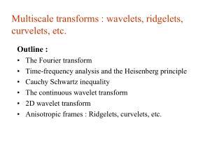 Multiscale transforms : wavelets, ridgelets, curvelets, etc.