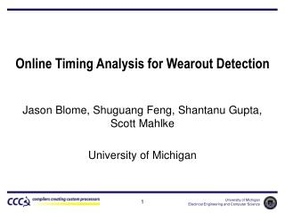 Online Timing Analysis for Wearout Detection