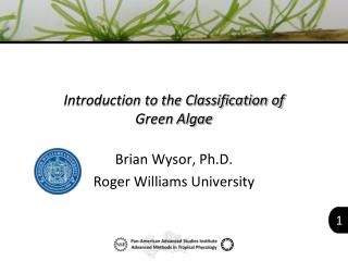 Introduction to the Classification of  Green Algae