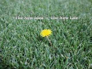 The New Idea  =  The New Life