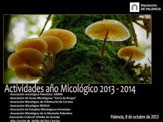 Actividades año Micológico 2013 - 2014